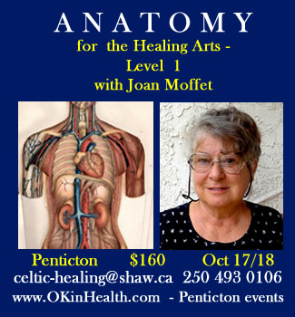 Anatomy for the Healing Arts - Level 1 with Joan Moffet