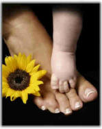 little bady foot with a big foott with a sunflower